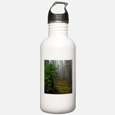 Pine forests 2 Water Bottle