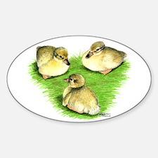 Snowy Mallard Ducklings Decal