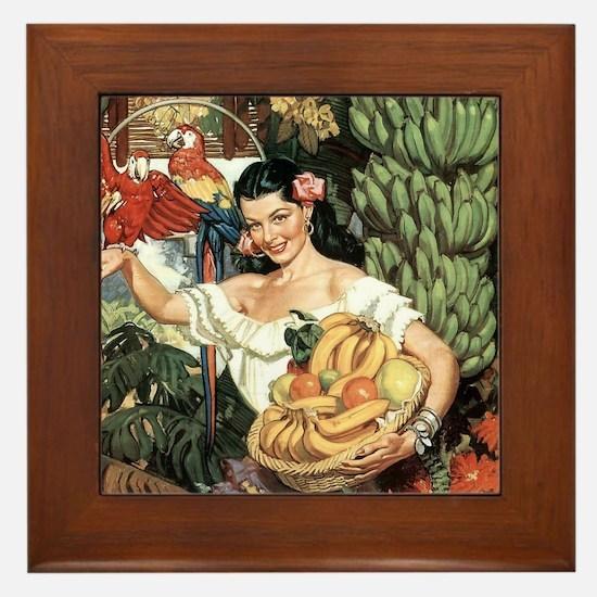 Vintage Mexico Framed Tile