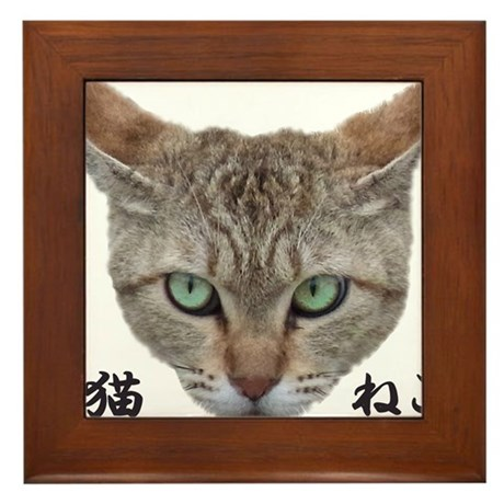 A Face01 Cat with words in japanese, so cool! Fram