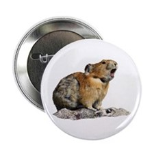 "Pika Howling 2.25"" Button"