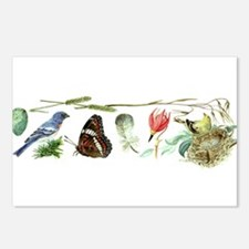 Birds, Nest, Butterfly Alice Flynn Nature Painting