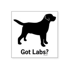 "Got Labs? Silhouette Square Sticker 3"" x 3"""