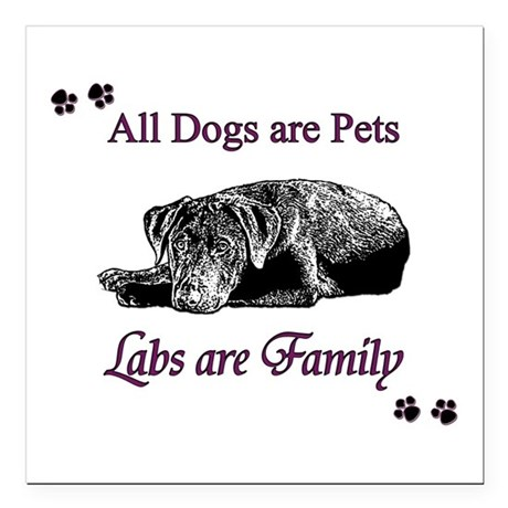 "Labs are Family Square Car Magnet 3"" x 3"""
