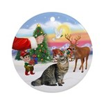 Treat for a Bobtail cat Ornament (Round)