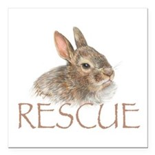 "Bunny rabbit rescue Square Car Magnet 3"" x 3&"