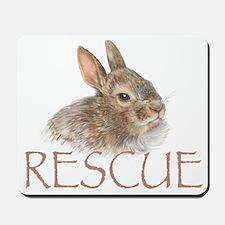 Bunny rabbit rescue Mousepad