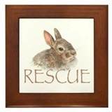 Rabbit rescue Framed Tiles