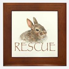 Bunny rabbit rescue Framed Tile