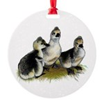 Goslings on Grass Round Ornament