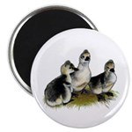 "Goslings on Grass 2.25"" Magnet (10 pack)"