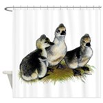Goslings on Grass Shower Curtain