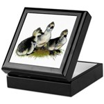 Goslings on Grass Keepsake Box