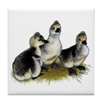Goslings on Grass Tile Coaster