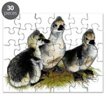 Goslings on Grass Puzzle