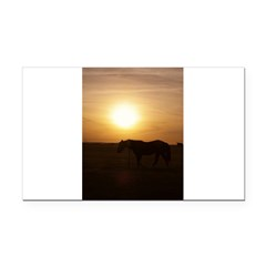 Sunset Pony Rectangle Car Magnet