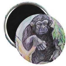 "Chimpanzee! Wildlife art! 2.25"" Magnet (100 pack)"