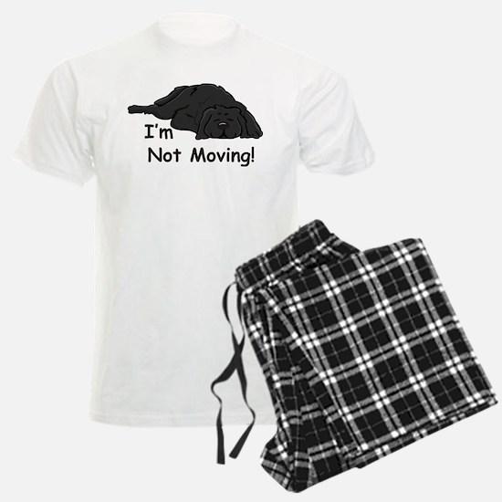 Newfie Carpet Pajamas