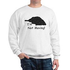 Newfie Carpet Sweatshirt