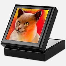 Colorful Cat Keepsake Box