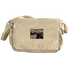 Beautiful Tahoe Messenger Bag