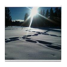 Tahoe's Winter Tile Coaster