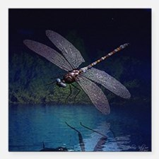 "dragonfly10asq.jpg Square Car Magnet 3"" x 3"""
