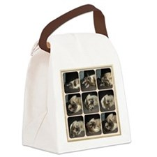 Tonkinese Self Petting Canvas Lunch Bag