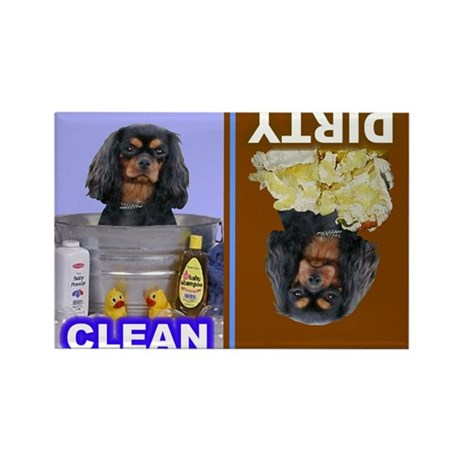 Dishwasher -RecMag -Cavalier,BlkTan Magnets