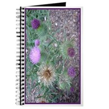 Thistles in various stages Journal
