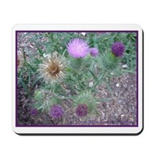 Thistles in various stages Mousepad