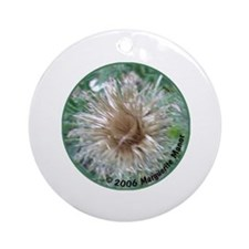 Thistles in various stages Ornament (Round)