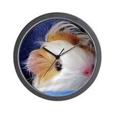 Baby Guinea Pig Face Wall Clock