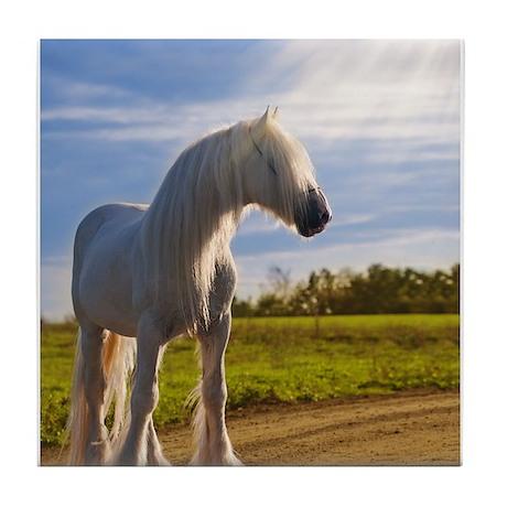 big shire horse Tile Coaster