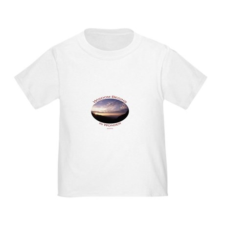 sunrise in the smoky mountains Toddler T-Shirt