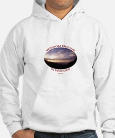 sunrise in the smoky mountains Hoodie