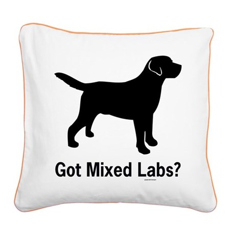 Got Mixed Labs II Square Canvas Pillow