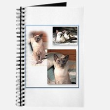 Cute Blank cat Journal