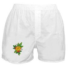 Star Ornament Boxer Shorts