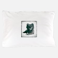 Adorable Black Pomeranian Puppy Pillow Case