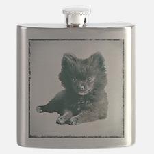 Adorable Black Pomeranian Puppy Flask