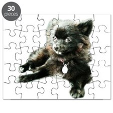 Adorable Black Pomeranian Puppy Puzzle