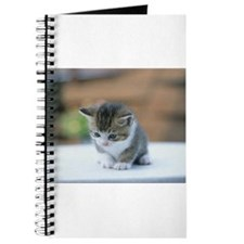 Kitten Journal