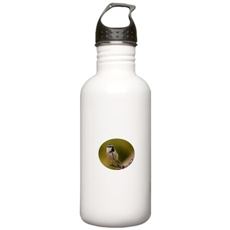 chickadee with seed Stainless Water Bottle 1.0L