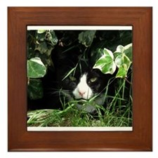Can You See Me Framed Tile