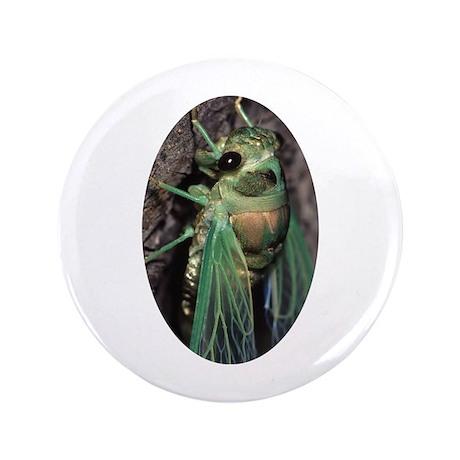 """Cicada 3.5"""" Button"""