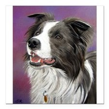 Pastel Painting of Border Collie Dog Square Car Ma