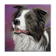 Pastel Painting of Border Collie Dog Tile Coaster