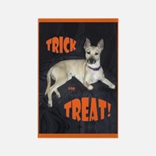 Trick for Treat Halloween Rectangle Magnet