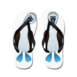 Blue footed booby Flip Flops